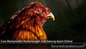 Cara Memprediksi Kemenangan Judi Sabung Ayam Online
