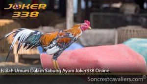 Istilah Umum Dalam Sabung Ayam Joker338 Online